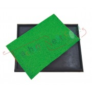 Disinfecting Floor Mat (51x63 cm)