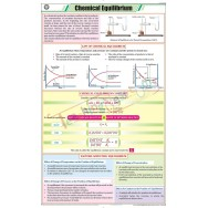 Chemical Equilibrium Chart (58x90cm)