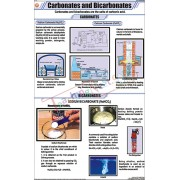 Carbonates and Bicarbonates Chart (58x90cm)