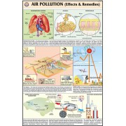 Air Pollution - Effects and Remedies Chart (50x75cm)
