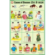 Causes of Diseases Chart (50x75cm)