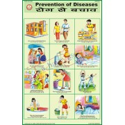 Prevention of Diseases Chart (50x75cm)