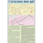 Section Drawing Chart (50x75cm)