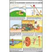 Impact of Environment Degradation on Humans Chart (50x75cm)
